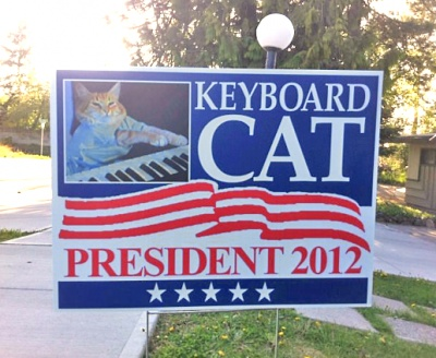 keyboard-cat